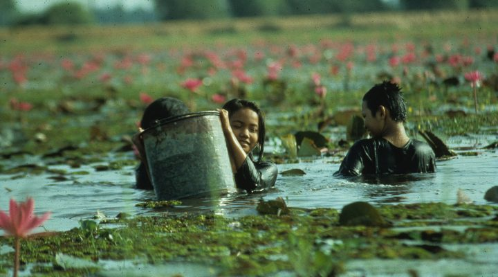 Les gens de la rizière (1994)